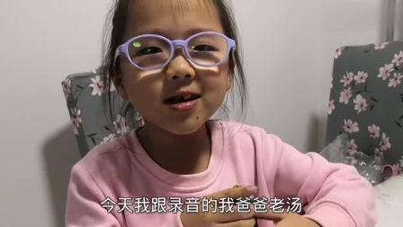 6岁女儿讲玩具故事,小猪佩奇去春游,遇见熊猫和狮子