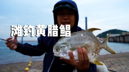光哥征战珠海桂山岛,滩钓收获美味黄腊鲳