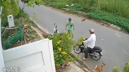 两男子骑摩托车盗窃,突然冲出一条大黄狗,监控拍下尴尬一幕
