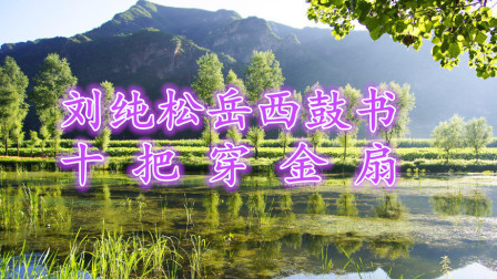 刘纯松岳西鼓书《十把穿金扇》第十四集