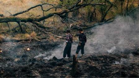 2兄弟捡到奇怪陨石带回家中,谁料一觉醒来,身体出现恐怖巨变