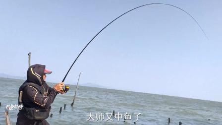 又到了矶钓季节,钓友冒着风浪爆钓大黑鲷鱼,最后看鱼获值了