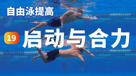 【自由泳提高】19.启动与合力|梦觉教游泳
