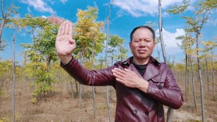 农民歌手王文正再续射雕英雄传音乐经典老歌,彰显农民哥风采!