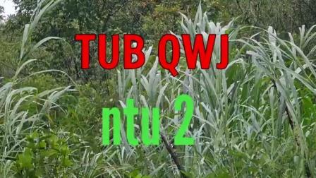 TUB QWJ NTU 2
