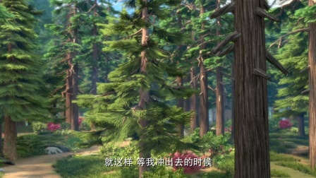 出发!长老树