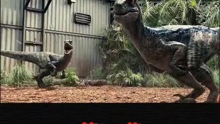 小恐龙这一对又看到什么猎物