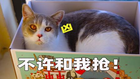 猫妈为了猫抓板,对小猫大打出手,小猫: 我是充话费送的吗?