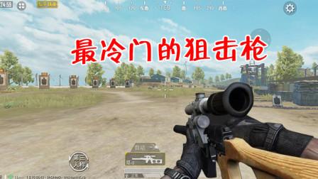 和平精英:吃鸡中最冷门的狙击枪?它比VSS还要惨,没人用!