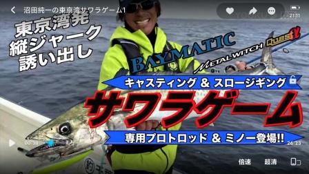 沼田純一の東京湾サワラゲーム1