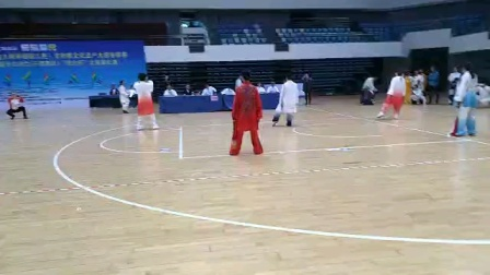 尤丽华老师陈式单剑比赛
