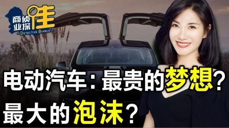 电动汽车:最贵的梦想?还是最大的泡沫?