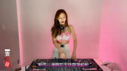 一首DJ舞曲《春暖》节奏极好,好听不错!