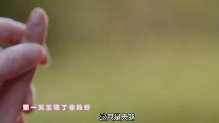 刺 韩晓婷与刘涛的闺蜜糖,有你的每分每秒,对我都很重要
