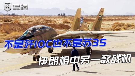 不是歼10C也不是苏35,伊朗相中另款战机,物美价廉功能多!