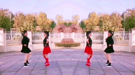 王妹儿广场舞(408号)双人水兵舞《红红线》