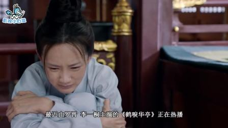 鹤唳华亭:文昔跟定权相认后,不料光速怀孕,成功走向开挂人生