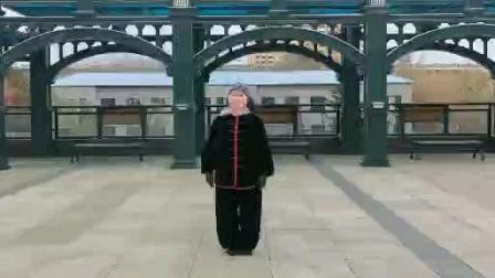 陈式心意混元太极拳24式