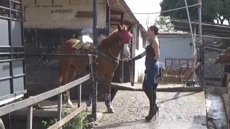 美女骑马🐴12