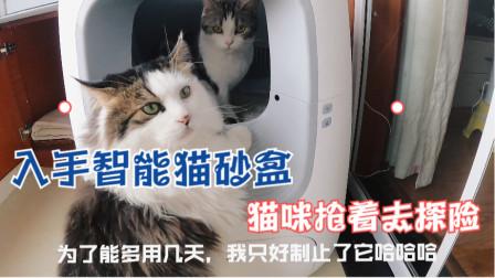 解放双手,给猫主子们换了个智能猫砂盆,不知道会不会好用呢