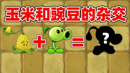 植物大战僵尸TAT1:豌豆射手和玉米射手杂交后产生了它!