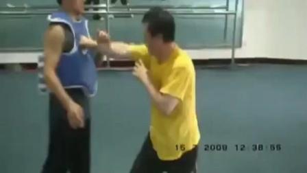 李天华教授八极拳打法示范