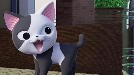 《甜甜私房猫》可奇,你好棒!