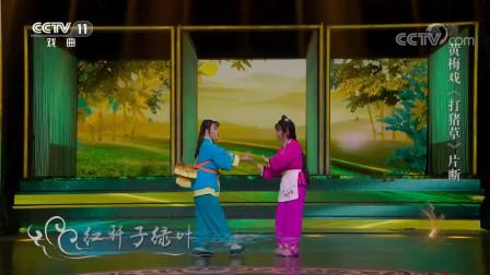 27-《角儿来了》 20201108 春风黄梅开 CCTV戏曲