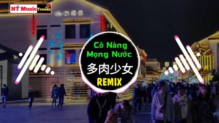 抖音Dj  赵芷彤 - 多肉少女 Remix