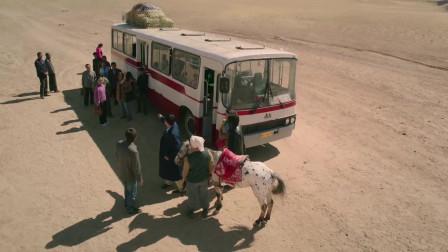 北方大地:沙漠里刮起沙尘暴,厂长碍于面子不肯下车,没一会后悔了