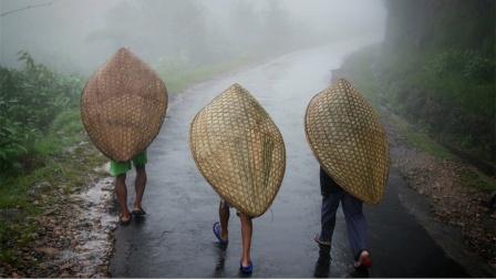 TOP3 世界上降雨量最大的地区排行榜!