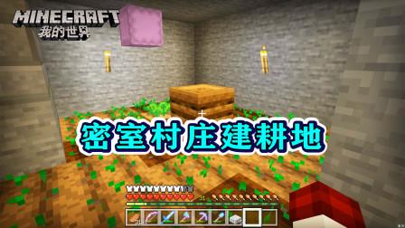 我的世界298:给密室村庄建了个耕地,挖了口水井,解决温饱问题