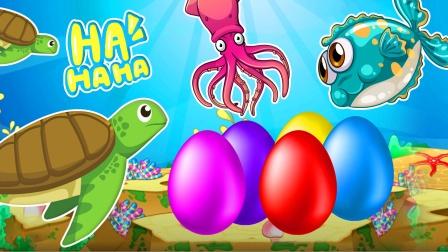 海龟先生在海底发现的彩蛋