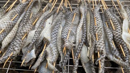 30元买了2斤鱼皮,第一次把鱼皮烤着吃,吃完这次不想再吃第二次