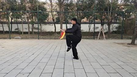 傅传杨式太极十三刀