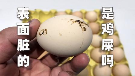 鸡蛋表面脏的是鸡屎吗?买回来要洗干净吗?放大1500倍探索