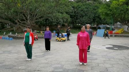 金慎选。方爱琴,杨少凤,杨少凤等于11月28日在龙港市龙翔公园晨练42式太极拳。