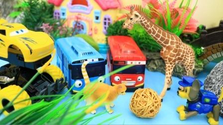 可爱的小动物们和太友巴士一起玩