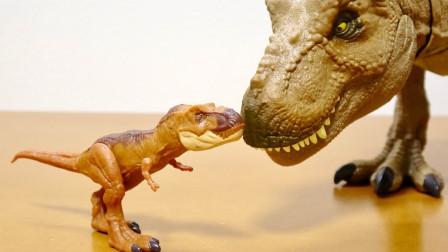 恐龙玩具故事:超炫酷!霸王龙的模型到底有多好玩呢?