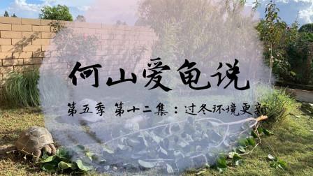 【何山爱龟说】第五季 第12集:过冬环境更新
