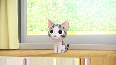 甜甜私房猫:小猫咪在玩什么呢