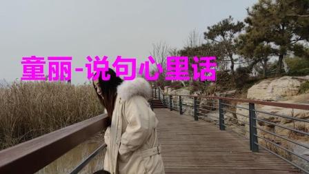 经典老歌在线播放《童丽-说句心里话》