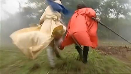 风云:雄霸败给聂风和步惊云,二人到处找不到他,原来躲在草丛里