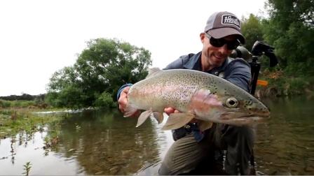 野外钓鱼:在超清水中发现鳟鱼[飞钓]
