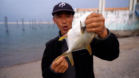 父子海边露营钓鱼,光哥鱼获竟然被老爸碾压,这到底是怎么回事