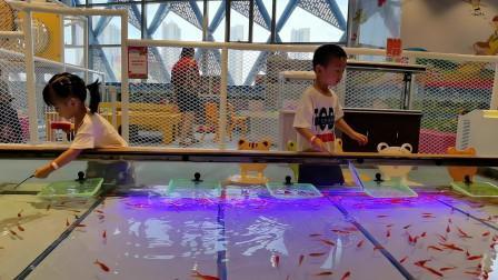 游乐园打捞小金鱼捕鱼小游戏
