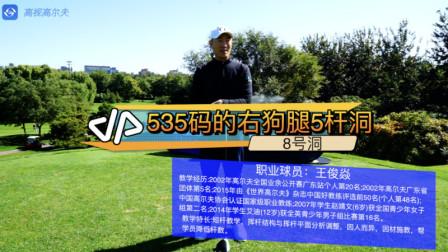 高尔夫教学:职业教练告诉你右狗腿5杆洞535码的8号洞怎么打