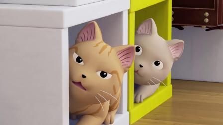 甜甜私房猫:小猫咪,你太酷了