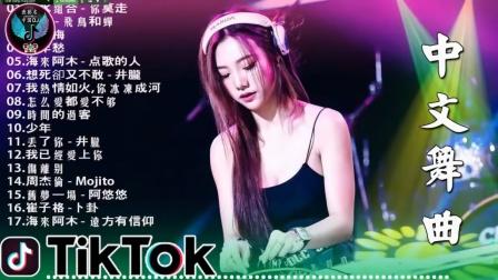 中文DJ版 莲坂 怎么爱都爱不够2020《中文DJ抖音》
