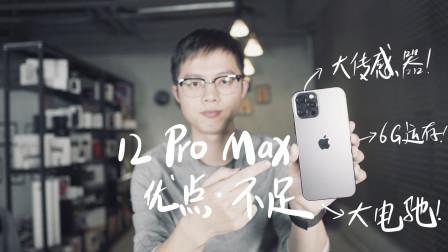iPhone 12 Pro Max评测:苹果的顶级旗舰 有多厉害?